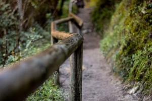 ruta senderismo el bosque benamahoma