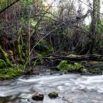 Ruta de senderismo El Bosque Benamahoma en imágenes