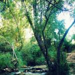 Semana Santa en El Bosque Cádiz