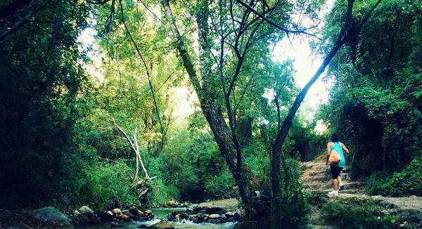 semana santa el bosque cadiz