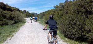 ruta bicicleta el bosque cadiz