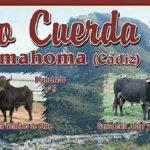 Toro Cuerda Benamahoma 2017