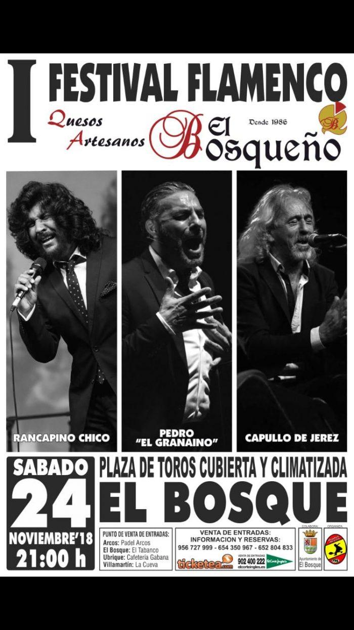 festival-flamenco-el-bosque