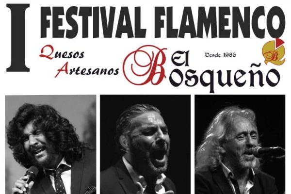 festival-flamenco-el-bosque